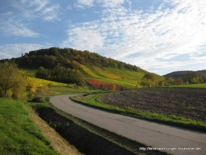 Fotos homepage herbst 012